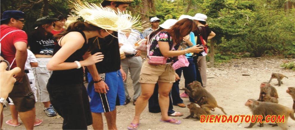 Đảo Khỉ - suối Hoa Lan