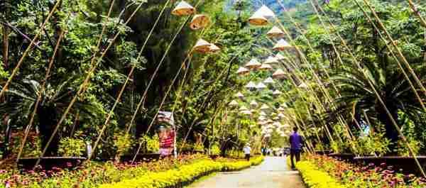 Suối Hoa Lan Nha Trang 2020