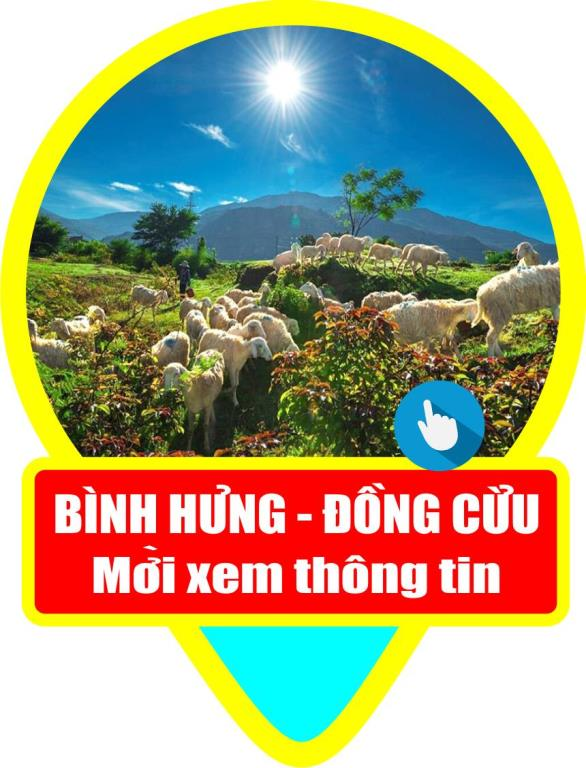 Tour Bình Hưng Hang Rái
